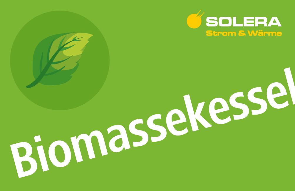 Icon Biomassekessel Solera